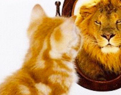 Autoestima: ese sentimiento de sí mismo